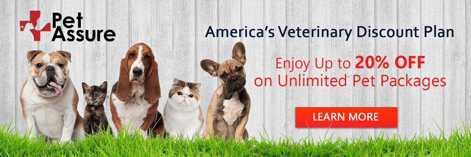 Enjoy Up To 20% Off On Unlimited Pet Packages 1500x500