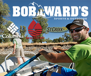 Bob Wards