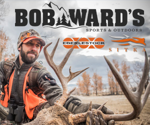 BobWards.com