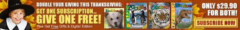Zoobooks Magazine Coupon