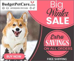 Enjoy 12% OFF winter savings
