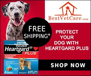 Image for Heartgard plus 1