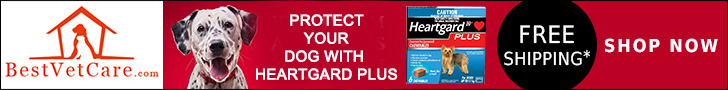 heartgard-plus-For-Dogs-all-size-pack