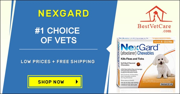 Nexgard-For-Dogs-all-size-pack