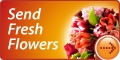 Send Fresh Flowers and give someone a Surprise