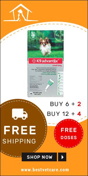 Buy Online K9 Advantix