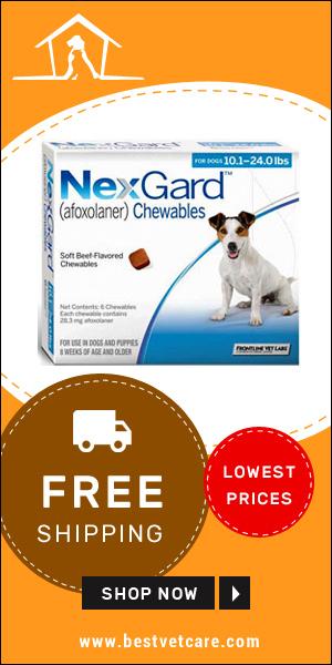 Cheap Nexgard Dogs