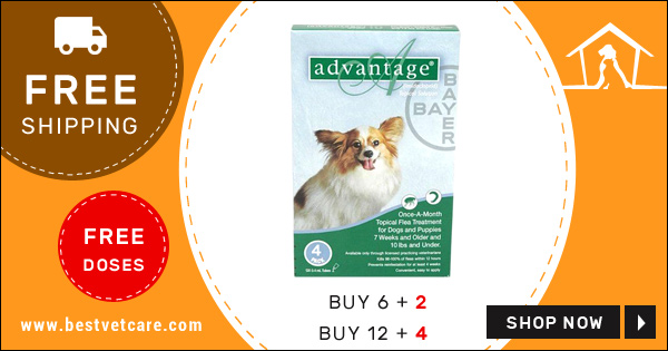 Buy Advantage Online