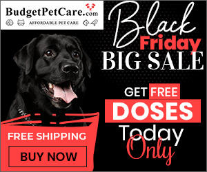 Be the First to Shop Black Friday Sale