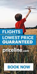 Priceline Airfare - You Choose Flight & Time