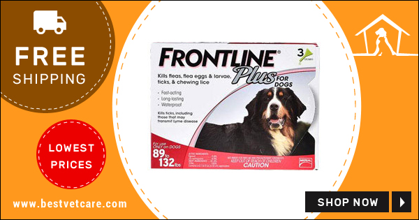 Online Frontline Plus Flea