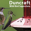 Shop Over 150 Hummingbird Feeders!