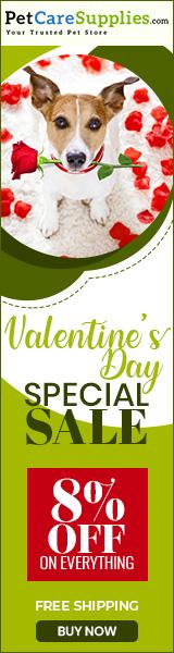 Valentine Day Special Sale