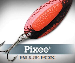 Blue Fox 300x250