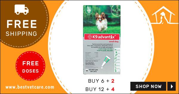 Buy K9 Advantix