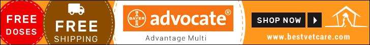 Buy Advantage Multi Online