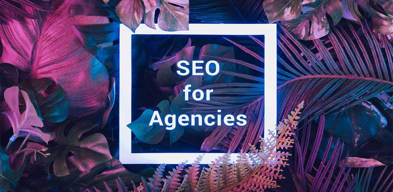 Free SEO-Tool to gain more website traffic