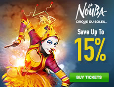 Cirque Du Soleil La Nouba  - Save 15%!