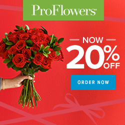 ProFlowers promo code 2018 - 20% off Valentine's Day Flowers & Gifts at ProFlowers