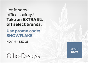 Save an extra 5% off with the code SNOWFLAKE. Select brands only. (Valid 11/19/18 - 12/23/18)