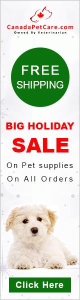 Big Holiday Season Sale
