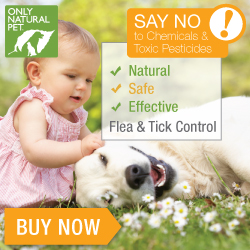 Natural Non-Toxic Flea & Tick Control