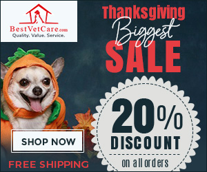 Image for Thanksgiving Sale