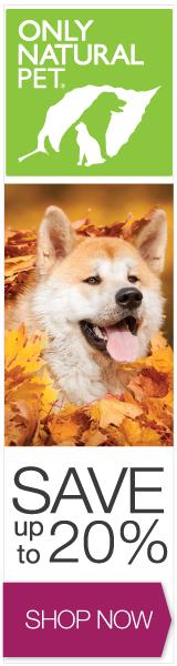 160x600 Fall Banner - Dog