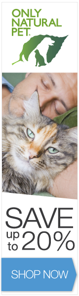 160x600 Spring/Summer Banner - Cat