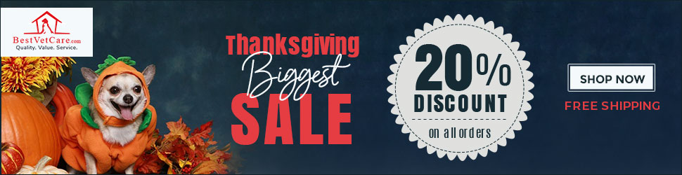 Best Vet Care - Thanksgiving Sale