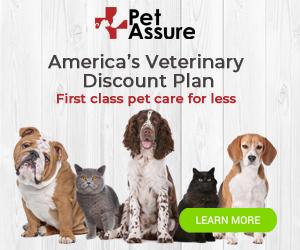 Pet Assure 300x250 banner
