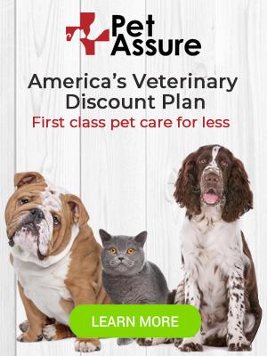 Pet Assure 300x400 banner