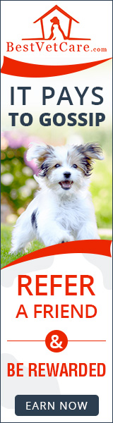 Best Vet Care - Share the Love: Refer a Friend