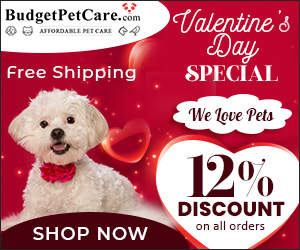 Image for We Love ❤ Pets
