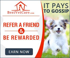 Best Vet Care - Refer More. Earn More