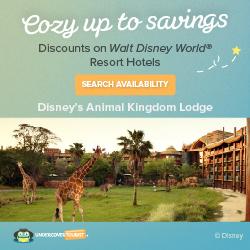Things to do a Walt Disney World