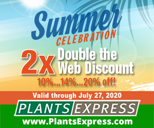 Summer Celebration 2x! Up to 20% off from Plants Express