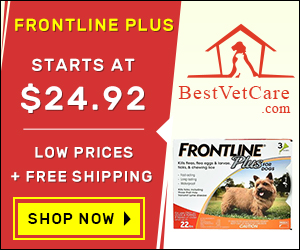 Image for Buy Cheap Frontline Plus Flea for Dogs Online with Free Shipping across US