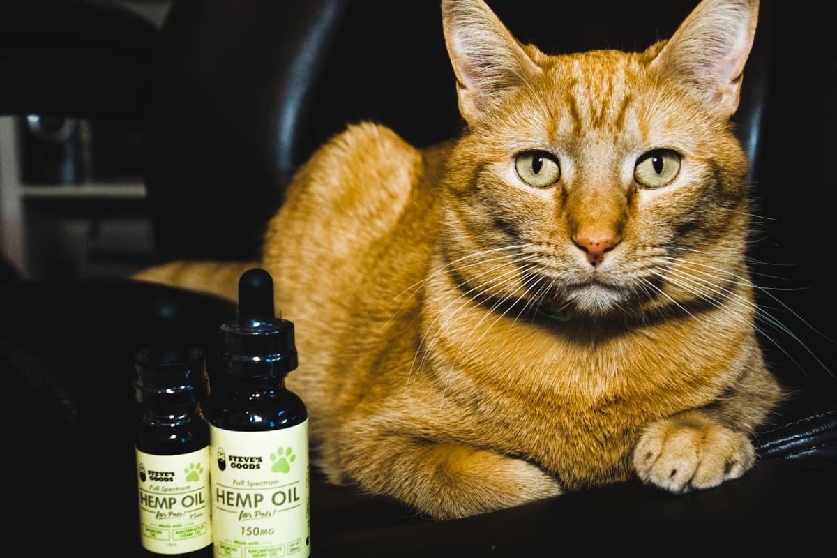steves-goods-pet-oil-tincture-cat-dog