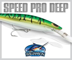 Williamson 300x250