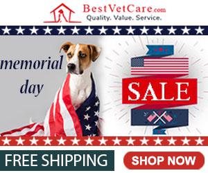 Best Vet Care - Memorial Day 2020