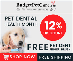 Get Pet Dent Free Finger Brush