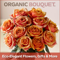 Eco-Elegant Flowers by Organic Bouquet | February 2017 Events Ocean City MD Area