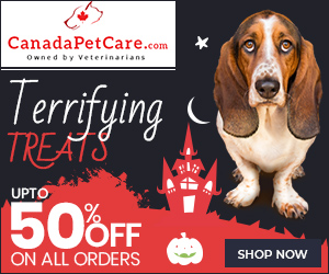 Free Shipping – Just for BOO!