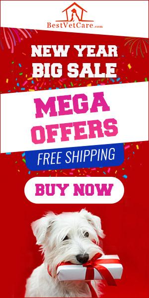 New year sale bestvetcare
