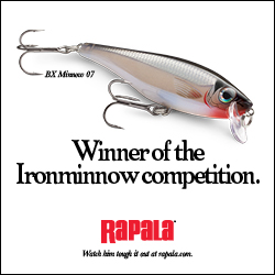Rapala Ironminnow 250x250