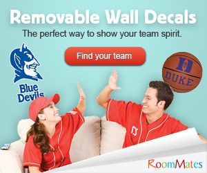 College and Professional sports team wall decals