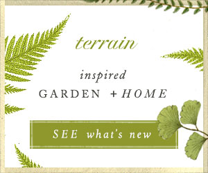 Terrain - See What's New