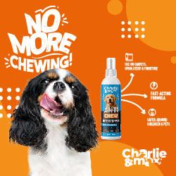 Anti Chew - Bite Stopper for dogs and cats