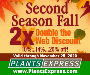 Second Season Fall 2X! Up to 20% off from Plants Express